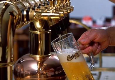 Budweiser Budvar B:CRYO – unikátní pivo z Budějovického Budvaru