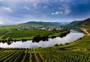 Festival německých vín