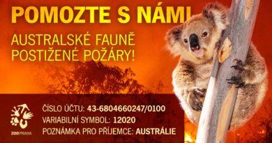 PŘES MILION KORUN NA POMOC AUSTRÁLII!