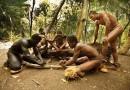 Sedm festivalových cen pro Vanuatu