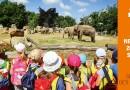 Pražská zoo odstartovala kampaň propagující světový úspěch