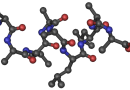 Irisin a s ním 170 vědeckých článků zpochybněno