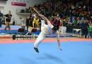Národní pohár Wushu 2015 v Praze